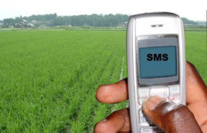 farmer-sms_sciencedialog